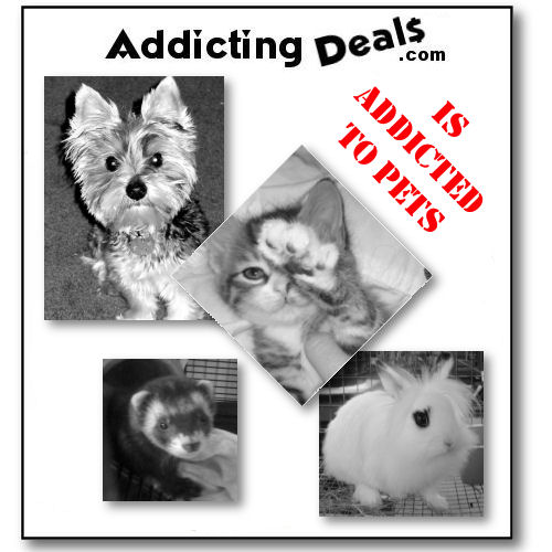 Addicting Deals is addicted to Pets!!!